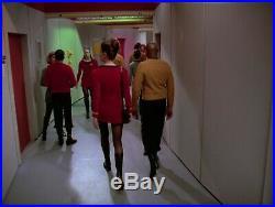 Star Trek Ds9 Authentic Original Prop Tribbles Episode Wall Plant On